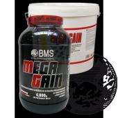 BMS - Mega Gain Professional, 4000g