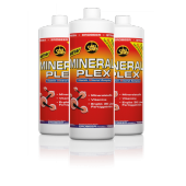 All Stars - Mineral Plex + L-Carnitin, 1 Liter Konzentrat (Nahrungsergänzungsmittel)