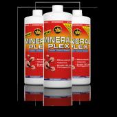 All Stars - Mineral Plex, 1l Konzentrat (Nahrungsergänzungsmittel)