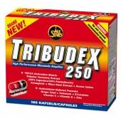 All Stars - Tribudex