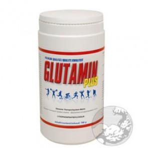 BMS - Glutamin Plus, 700g Dose